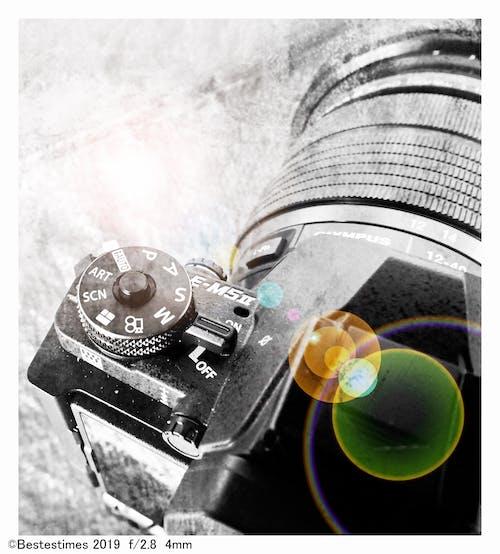 Free stock photo of bestestimes, lens, lens flare