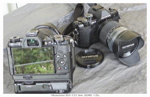 Free stock photo of bestestimes, camera, olympus