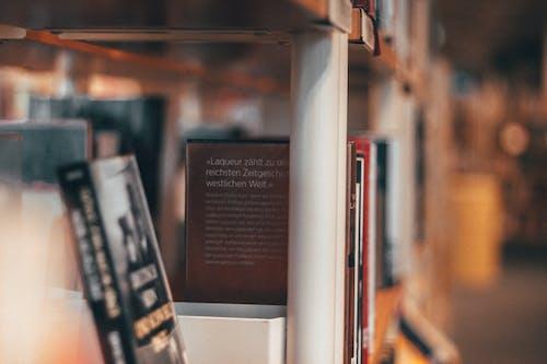Foto profissional grátis de biblioteca, borrão, estante, livraria