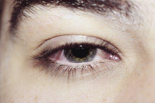 Kostnadsfri bild av öga, ögon, se