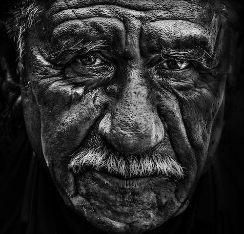 シニア, 老人, 肖像画の無料の写真素材