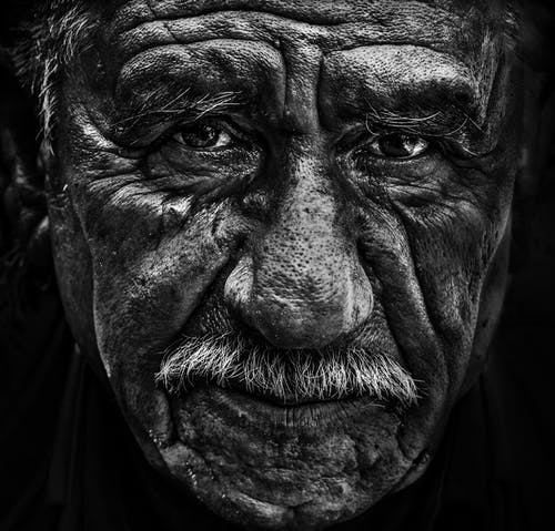 Free stock photo of people, portrait, senior