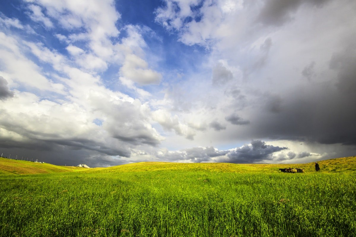 Free Stock Photo Of Green Landscape Spring