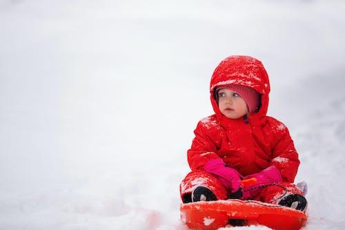 Fotos de stock gratuitas de adorable, bebé, escarcha, frío