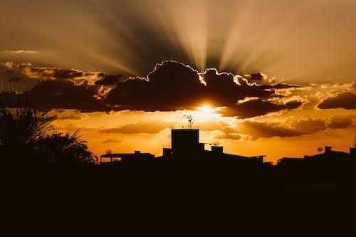 คลังภาพถ่ายฟรี ของ brilho do sol, cidade, พอลโซล