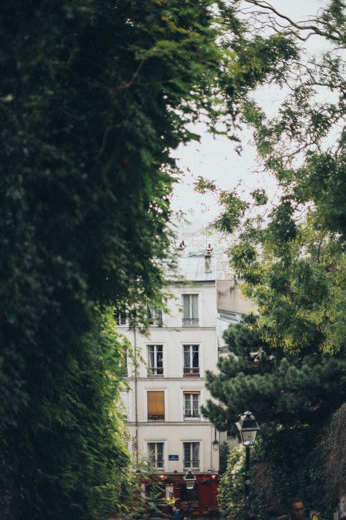 Ilmainen kuvapankkikuva tunnisteilla arkkitehtuuri, kasvu, lehdet, maisema