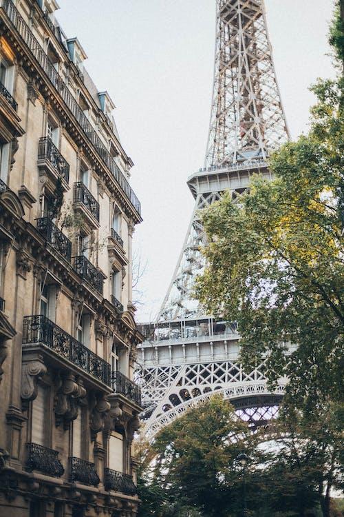地標, 城市, 塔, 外觀 的 免费素材照片
