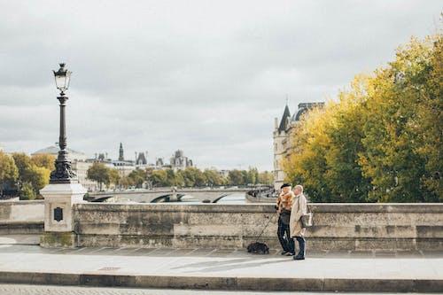 人walking狗, 公園, 噴泉, 城市 的 免费素材照片