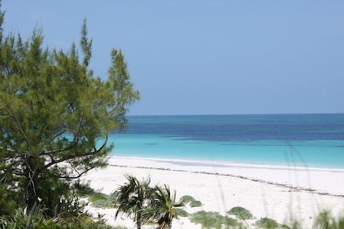 bahamalar, cennet, kum, okyanus içeren Ücretsiz stok fotoğraf