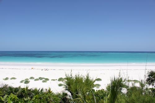 bahamalar, cennet, eleuthera, kum içeren Ücretsiz stok fotoğraf