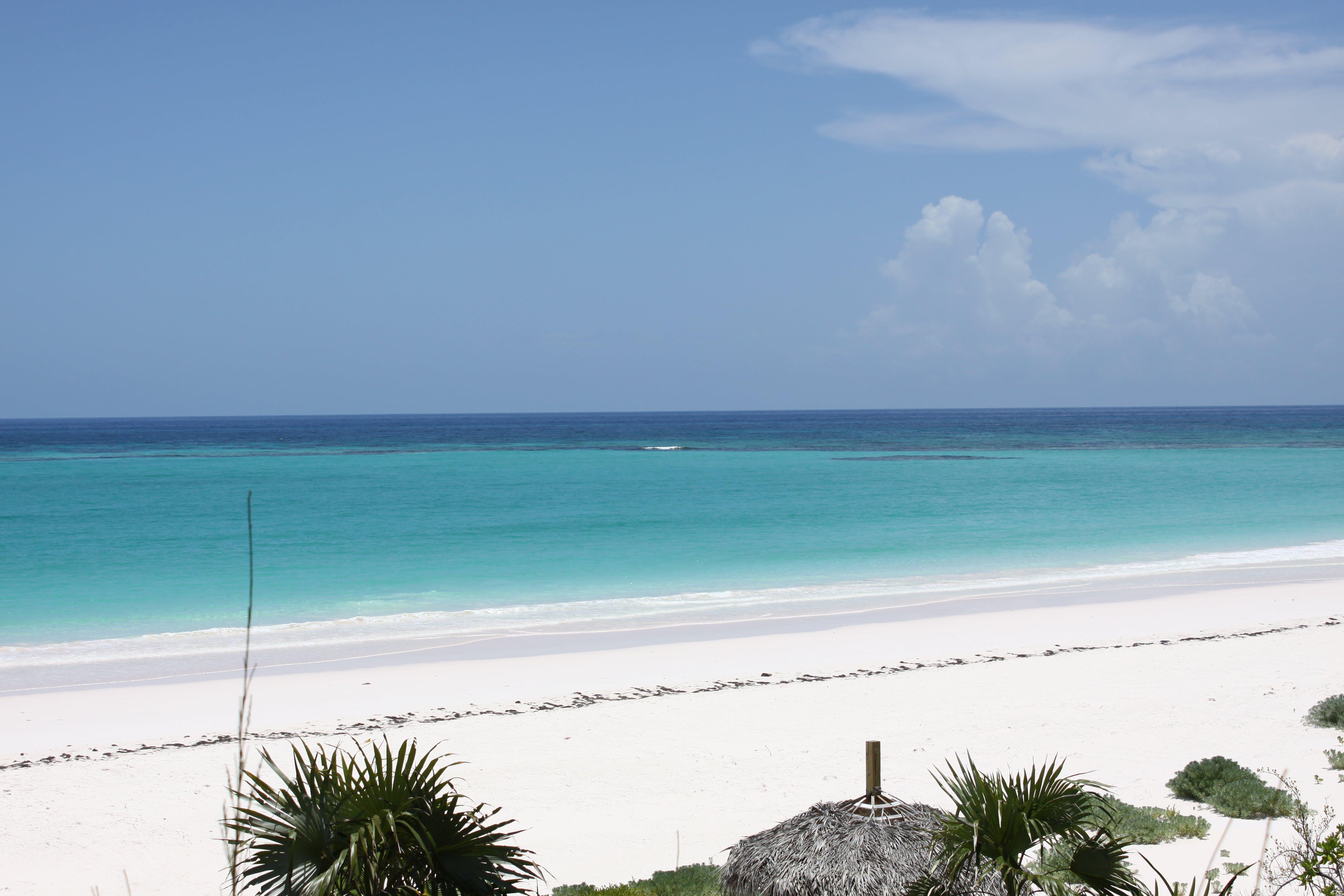 Free stock photo of Bahamas, beach, green, ocean
