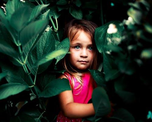 Ilmainen kuvapankkikuva tunnisteilla kauniit silmät, lapset, malli, silmät