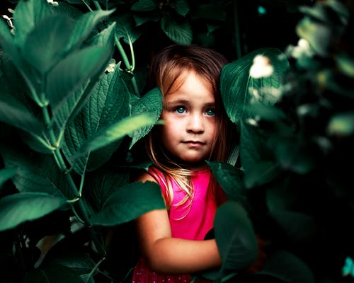 Foto stok gratis anak-anak, cewek, hijau, mata