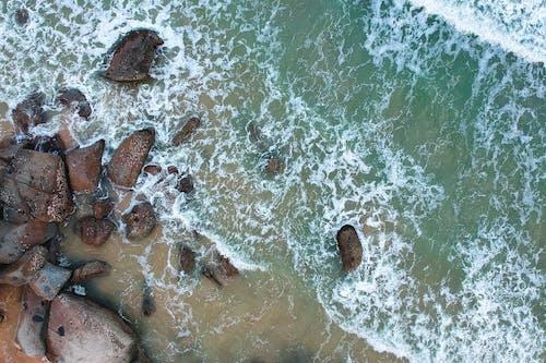 Foto d'estoc gratuïta de cos d'aigua, Costa, des de dalt, escuma