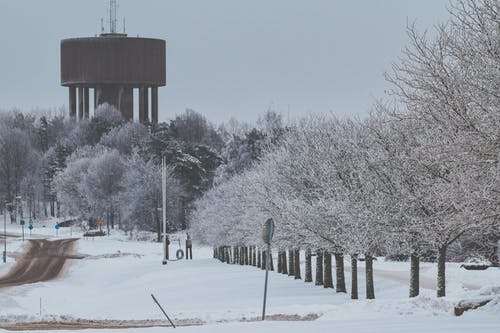 Free stock photo of forest, water tower, winter, winter landscape