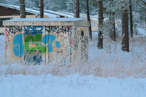 Free stock photo of forest, graffiti, winter, winter landscape