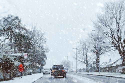 Foto profissional grátis de árvores, Branca de Neve, carros, cênico