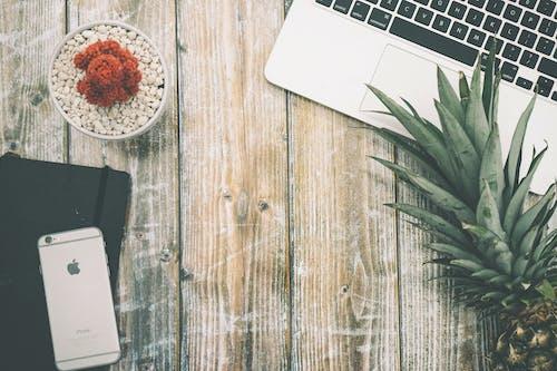 Imagine de stoc gratuită din ananas, apple, birou, cactus