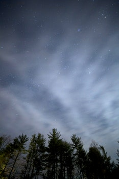 Free stock photo of sky, night, clouds, forest