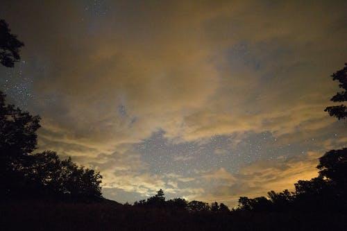 açık, ağaçlar, akşam, bulutlar içeren Ücretsiz stok fotoğraf