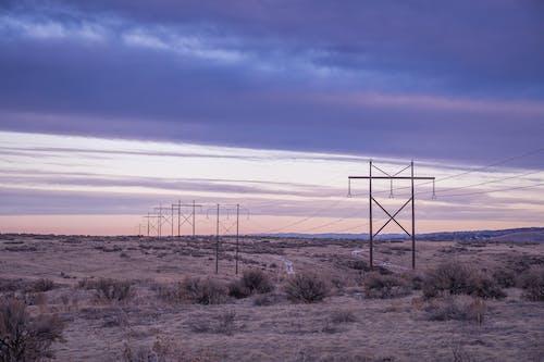 사막, 새벽, 선, 실루엣의 무료 스톡 사진