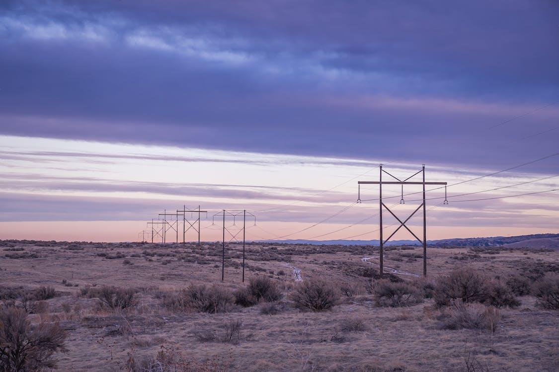 사막, 새벽, 선