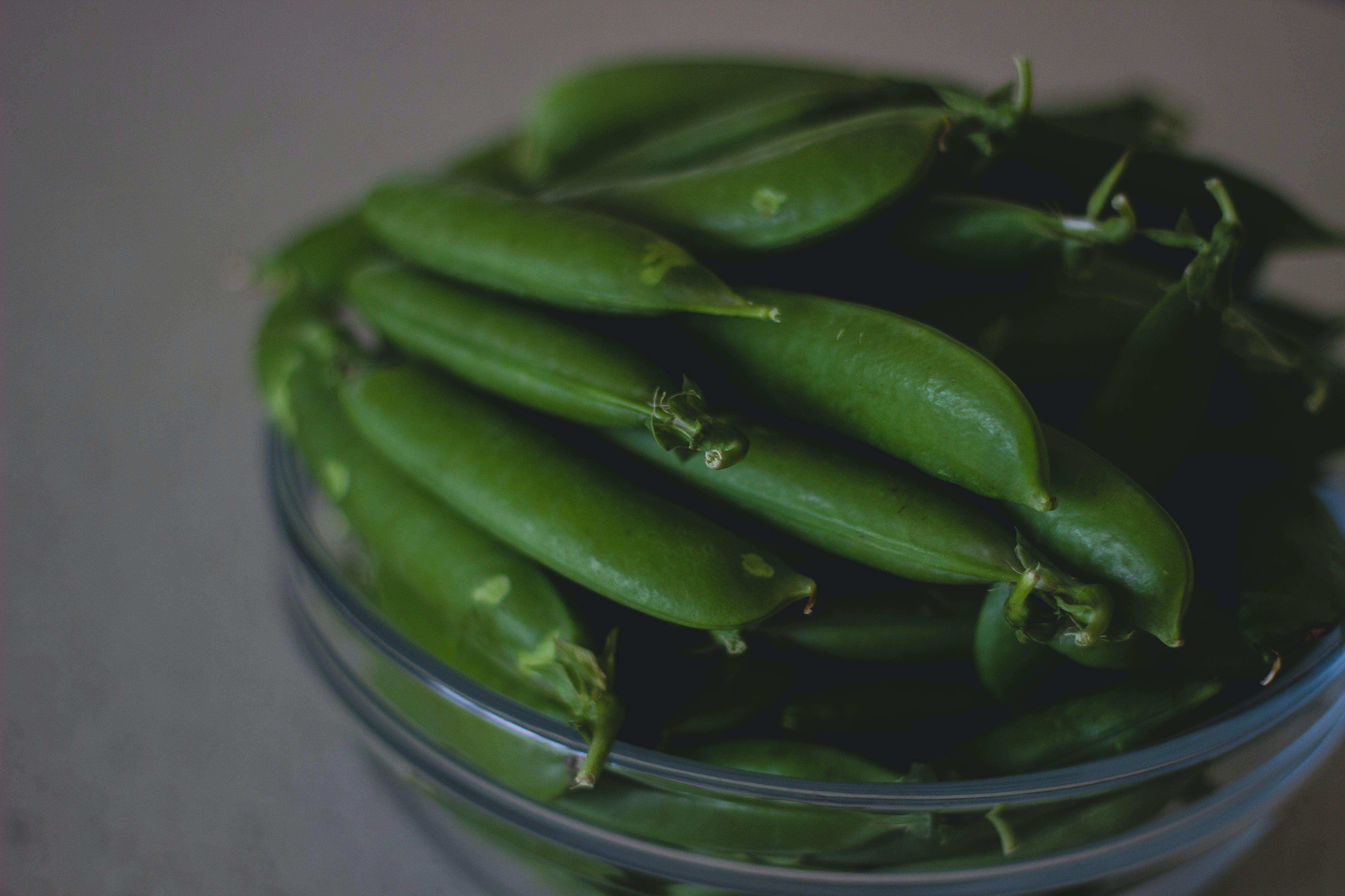 beans, bowl, close-up