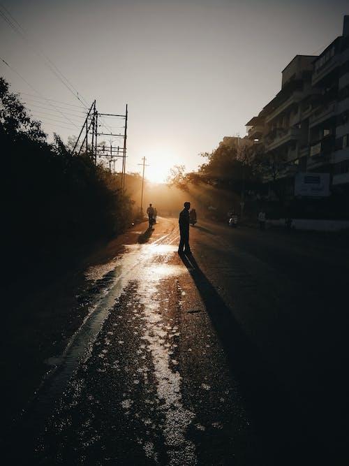 Foto d'estoc gratuïta de capvespre, carrer, hivern, hora daurada