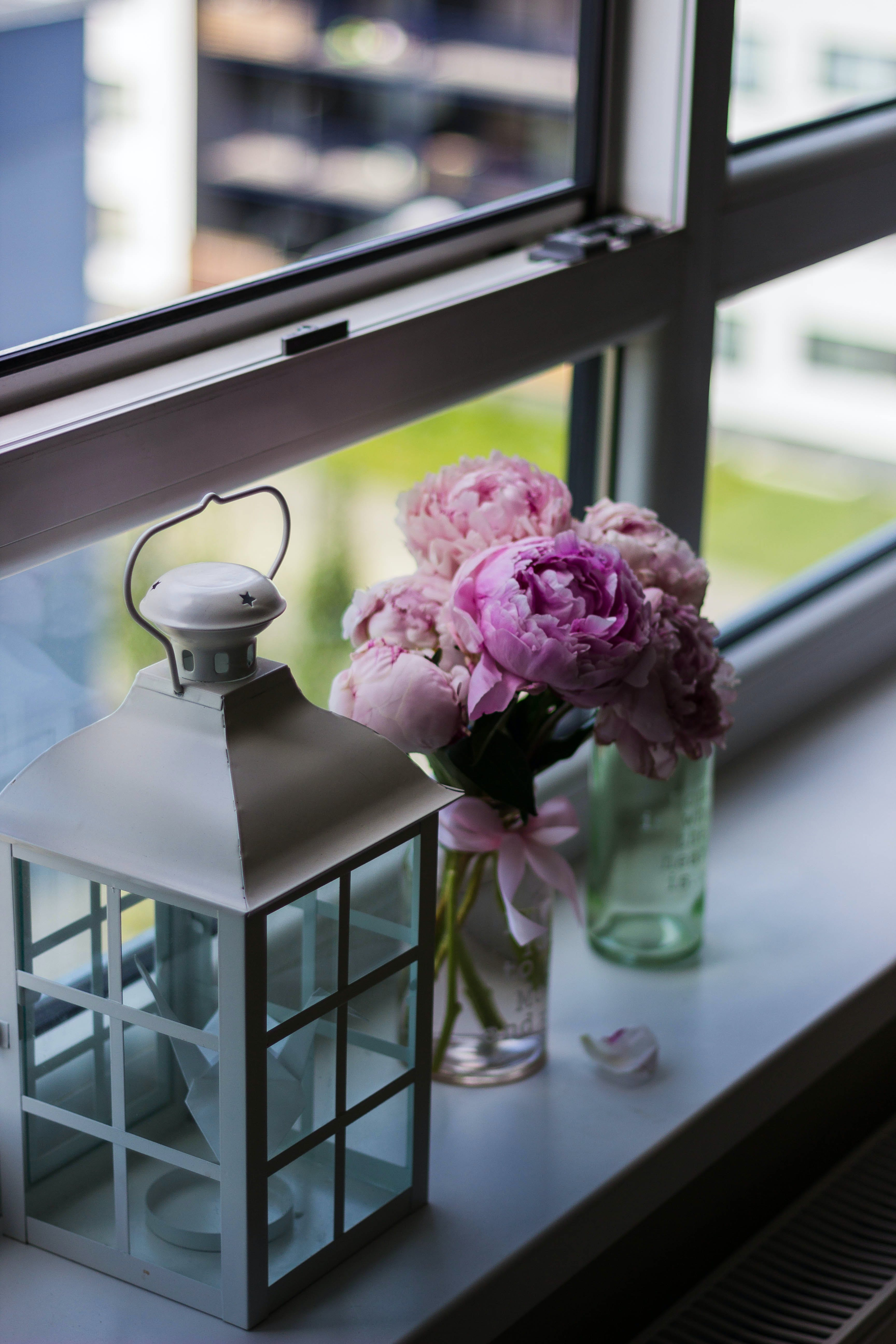 Candle Lantern Near Purple Petaled Flower on Glass Window