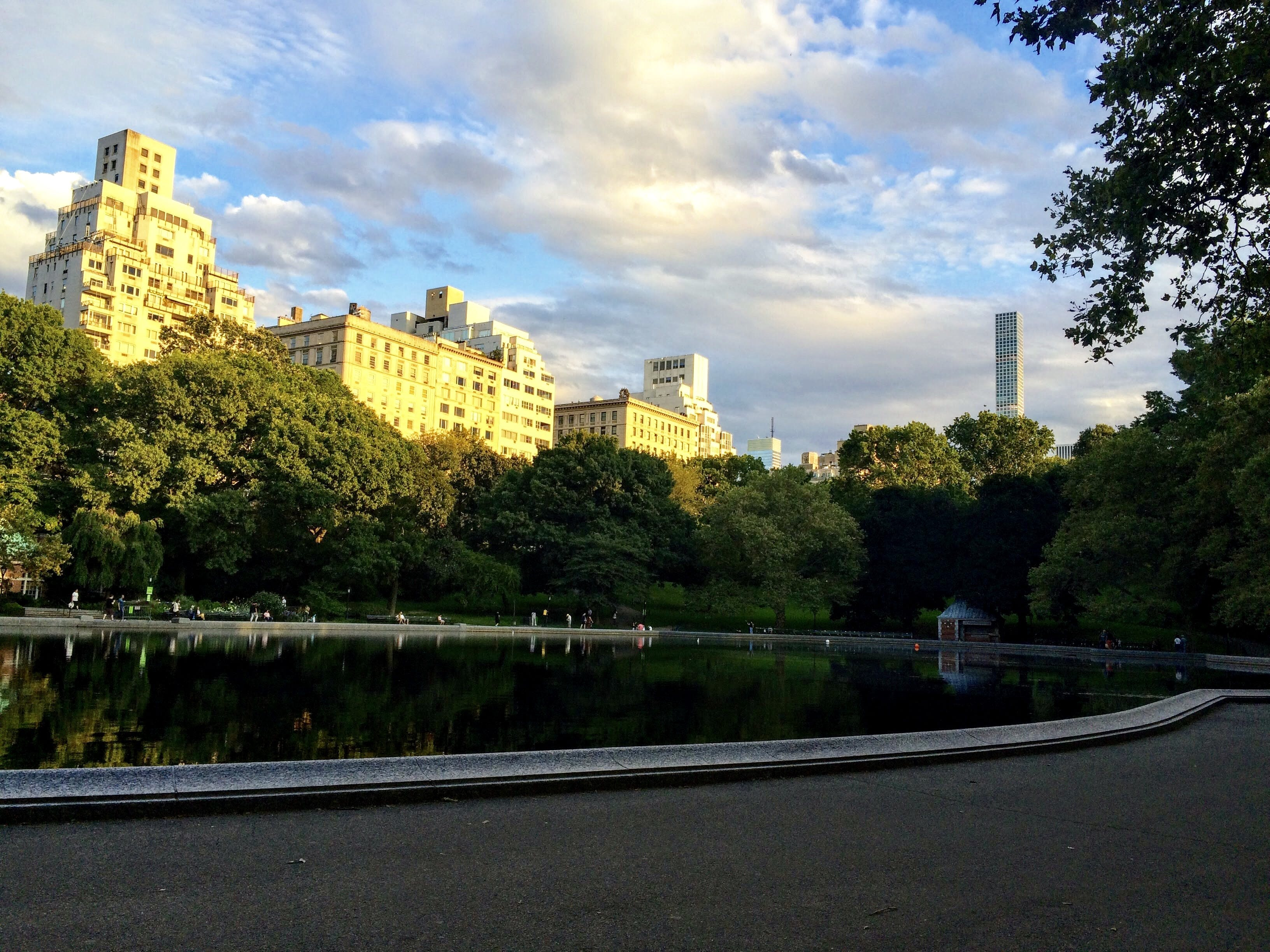 Free stock photo of central park, sunset