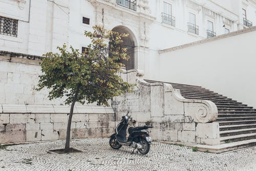 Photo of Motor Scooter Parked Near Stairs and Tree