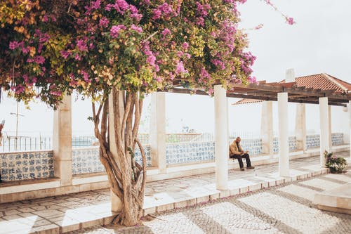 Man Sitting on Concrete Block Near Waiting Shed