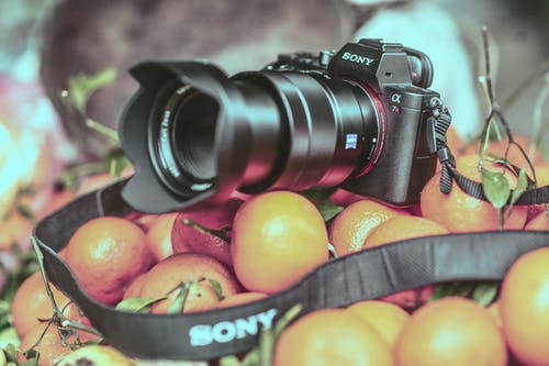 Gratis stockfoto met camera, cameralens, fruit