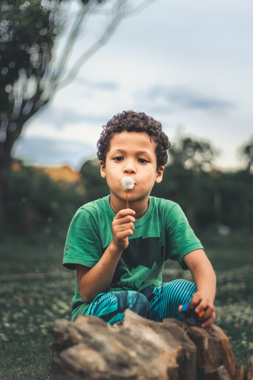 Selective Focus Photo of Kid Blowing Dandelion
