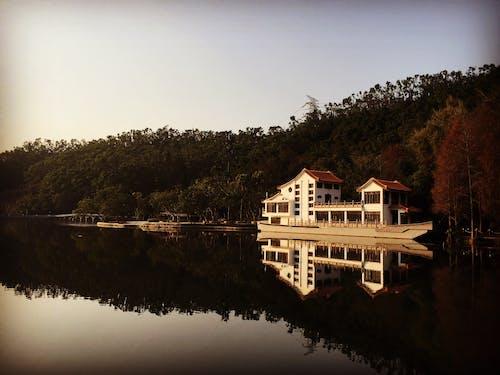 Imagine de stoc gratuită din arbore, barcă, cameră, cer
