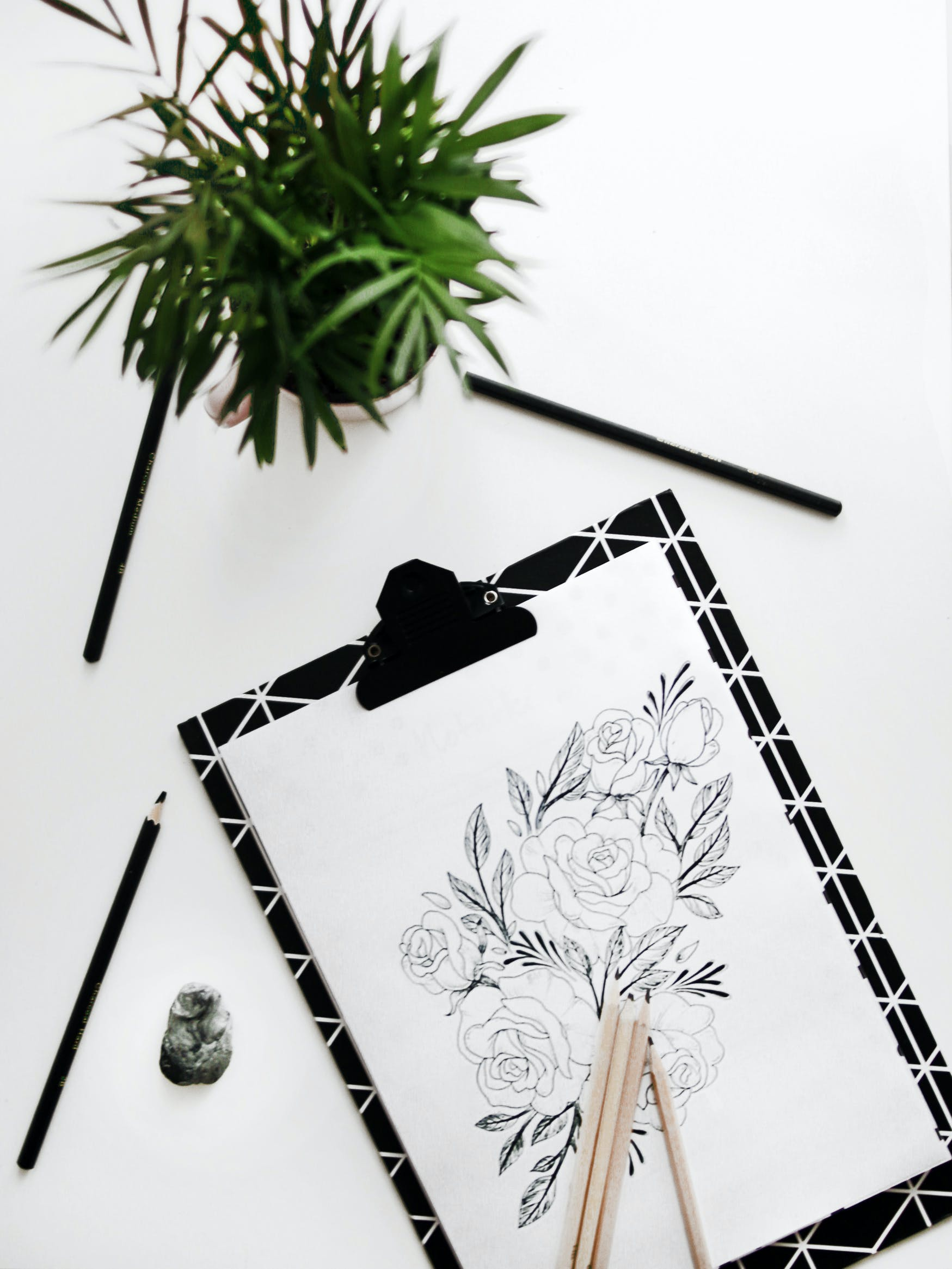 Black and White Clipboard With Floral Sketch on Table Near Green-leafed Plant in Pot