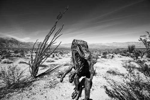 Free stock photo of Anza Borrego, black and white, desert, dinosaur