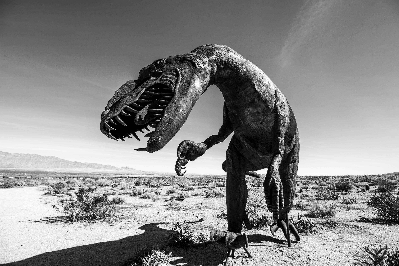 Free stock photo of Anza Borrego, black and white, desert, dinosaur