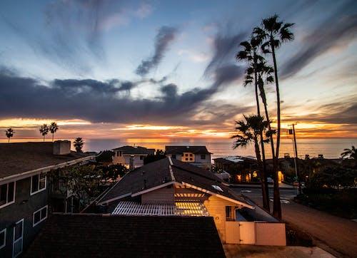 Kostnadsfri bild av encinitas, hav, Palmer, solnedgång