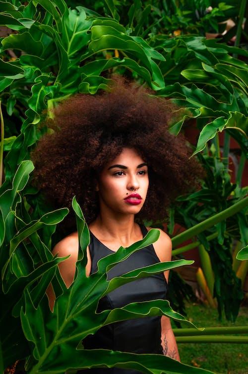 Frau, Die Nahe Grünen Blatt Pflanzen Steht