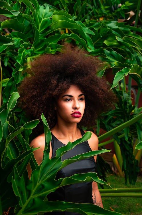 Základová fotografie zdarma na téma afro, atraktivní, dáma