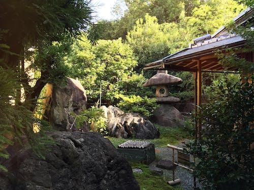 Darmowe zdjęcie z galerii z japonia, kioto, spokój