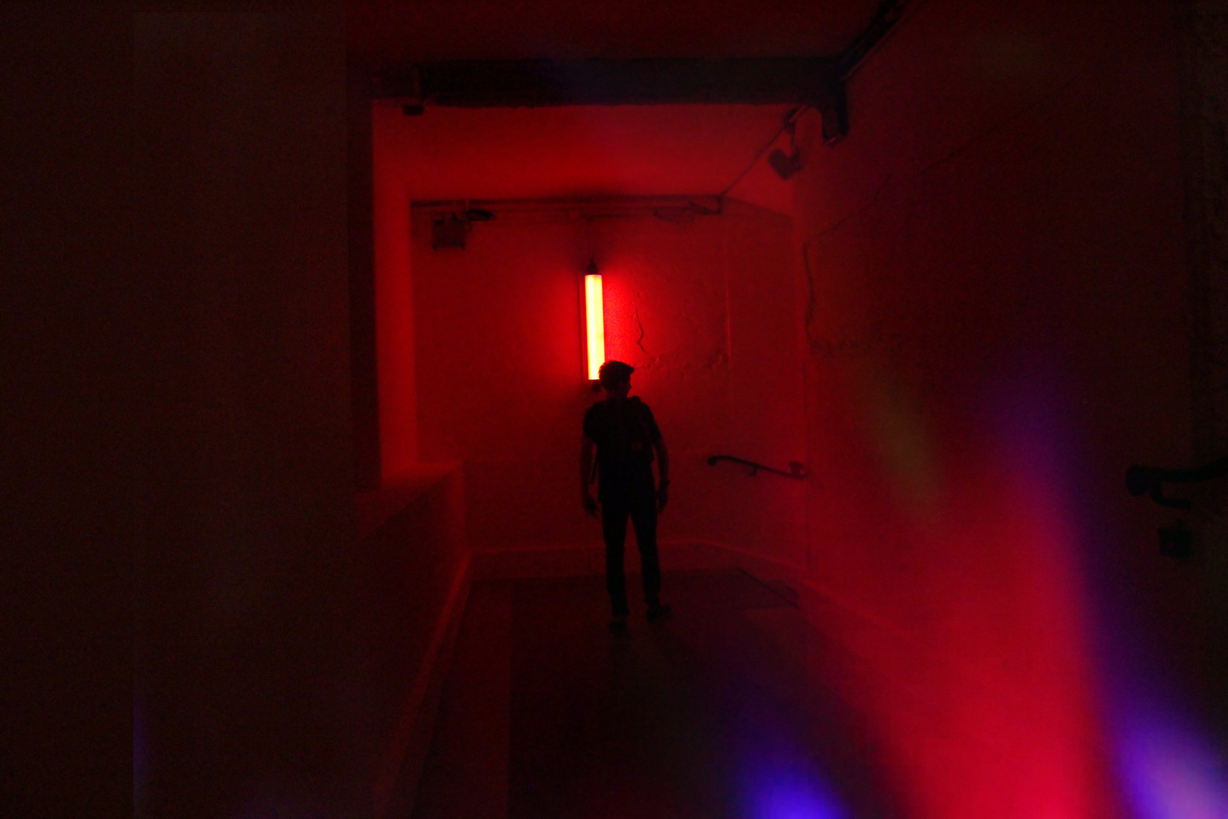 Free stock photo of dark, explorer, neon lights, paris