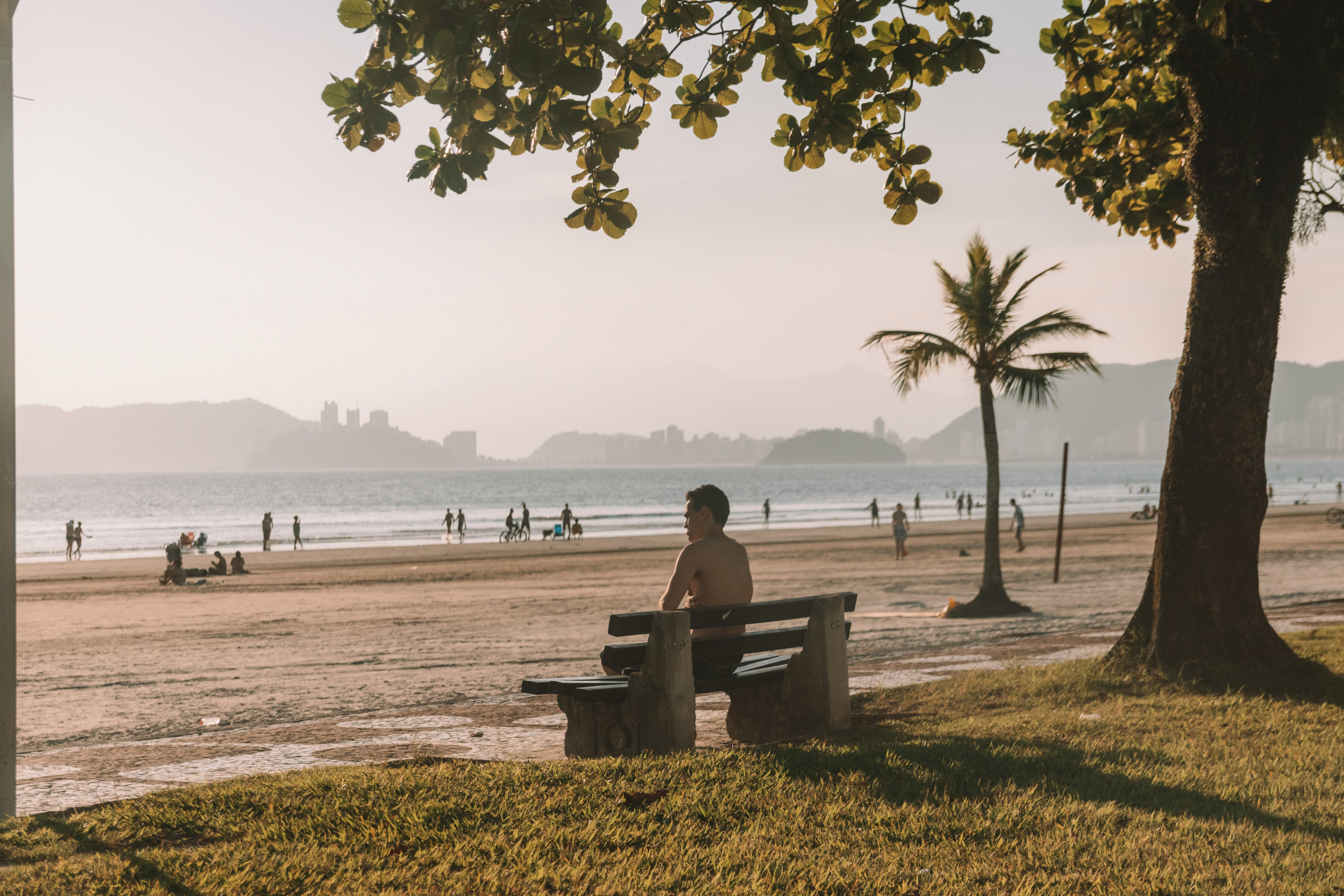 Shirtless Man Sitting on Bench Fronting Beach