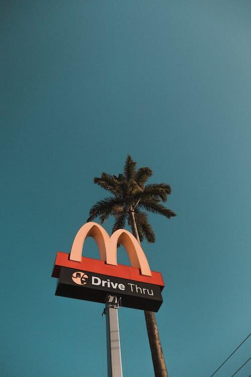 低角度拍攝, 低角度攝影, 垂直, 天空 的 免费素材照片