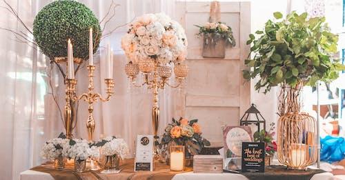 Δωρεάν στοκ φωτογραφιών με floral σχέδιο, αγάπη, άνθη πορτοκαλιάς, ανθίζω