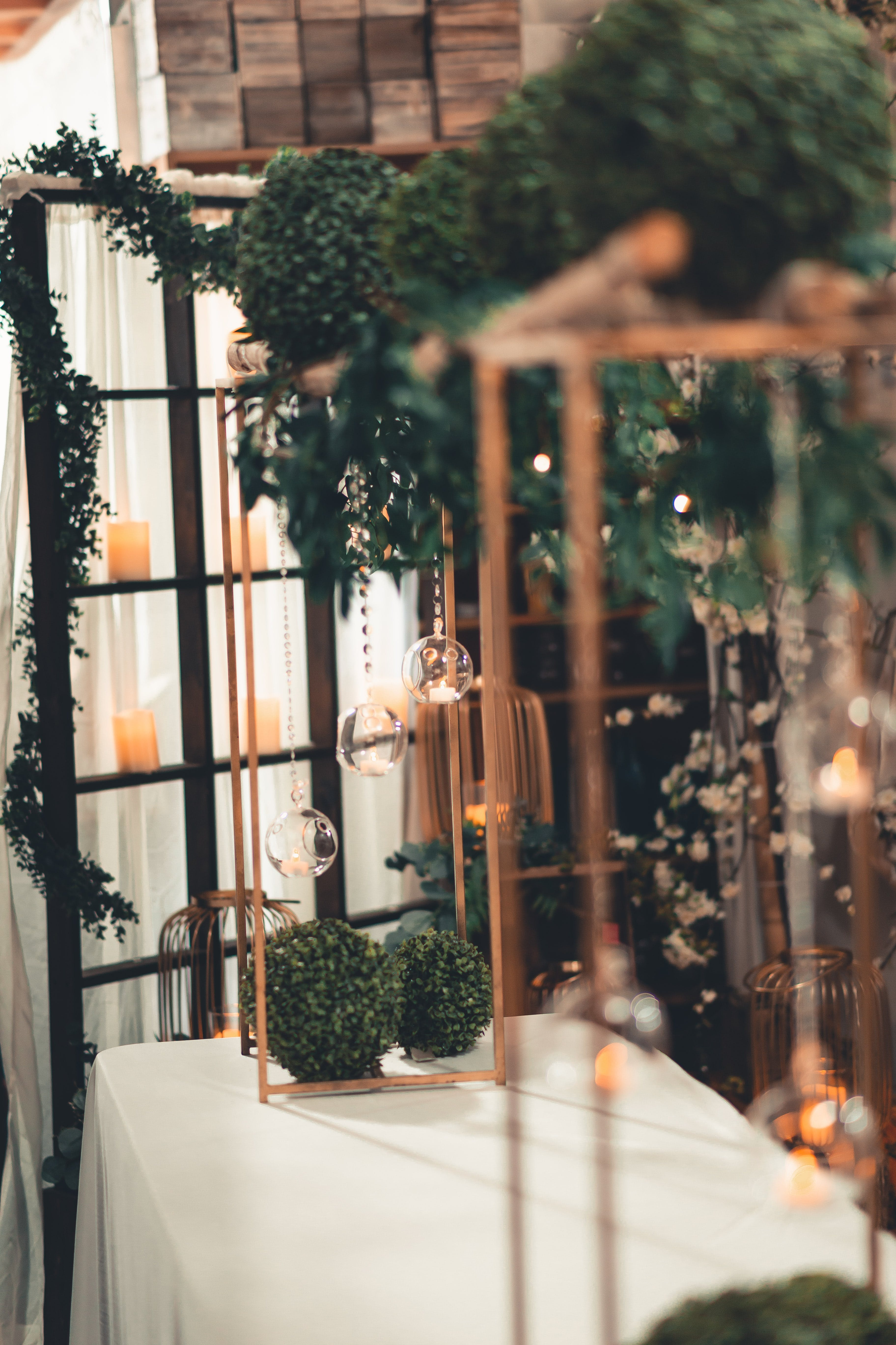 Green Plants on White Tablecloth Inside Lighted Room