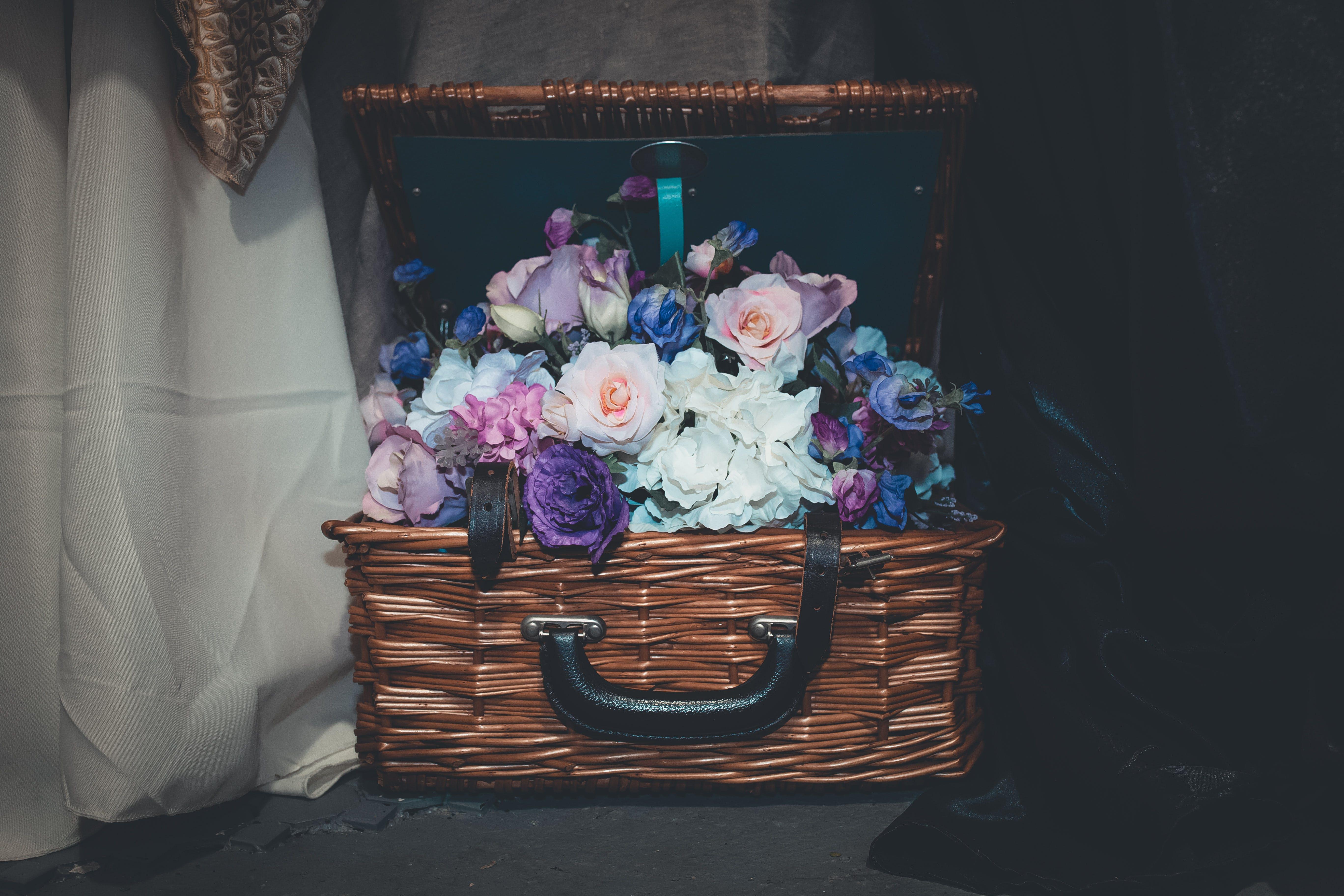 of basket, beautiful, bloom, blooming