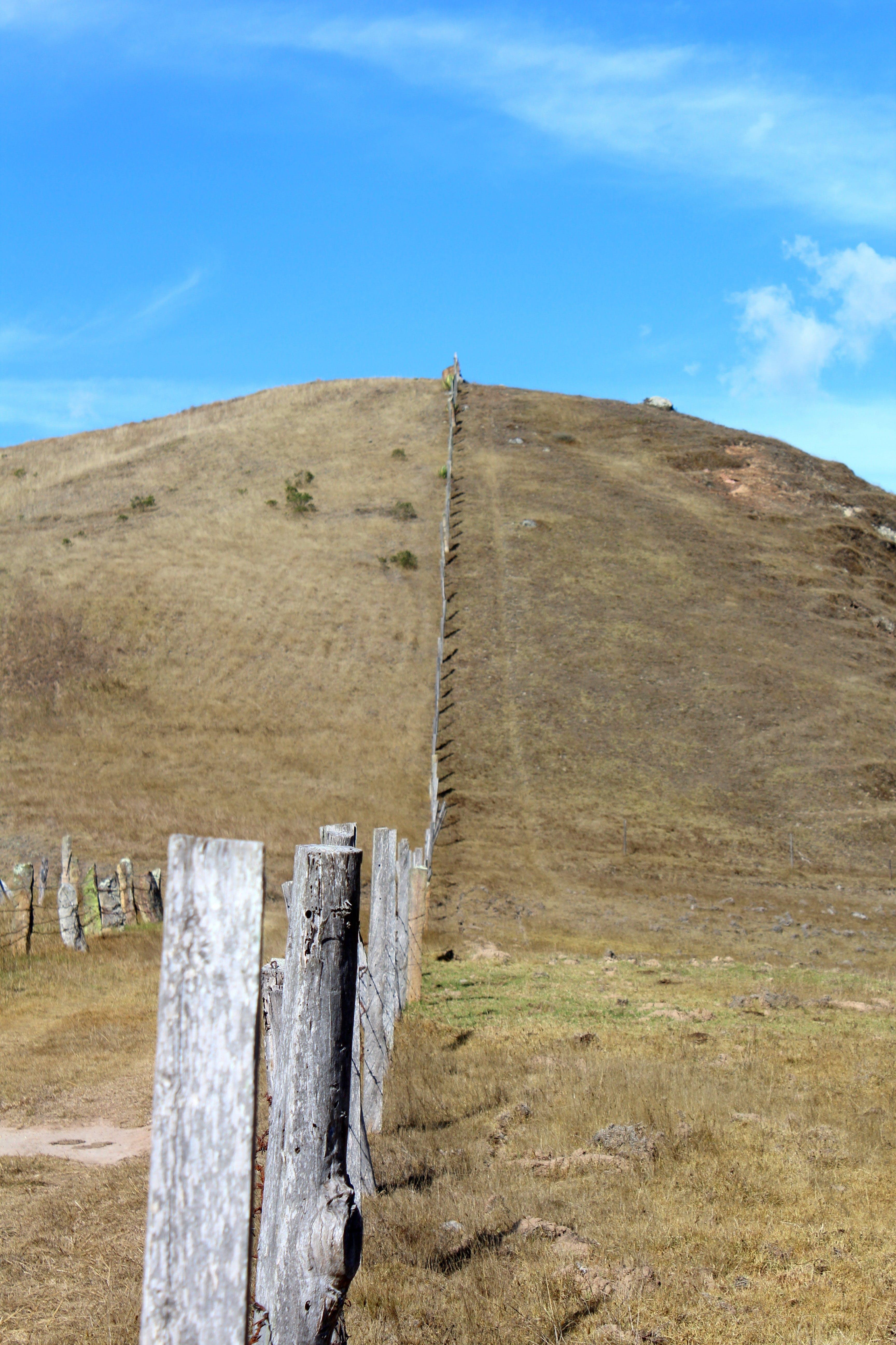 Free stock photo of fence, landscape