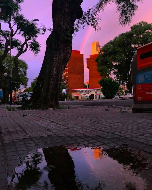 Free stock photo of rainbow, reflections